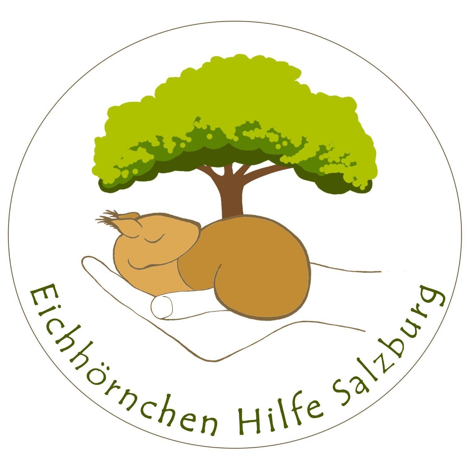 Eichhörnchenhilfe Salzburg