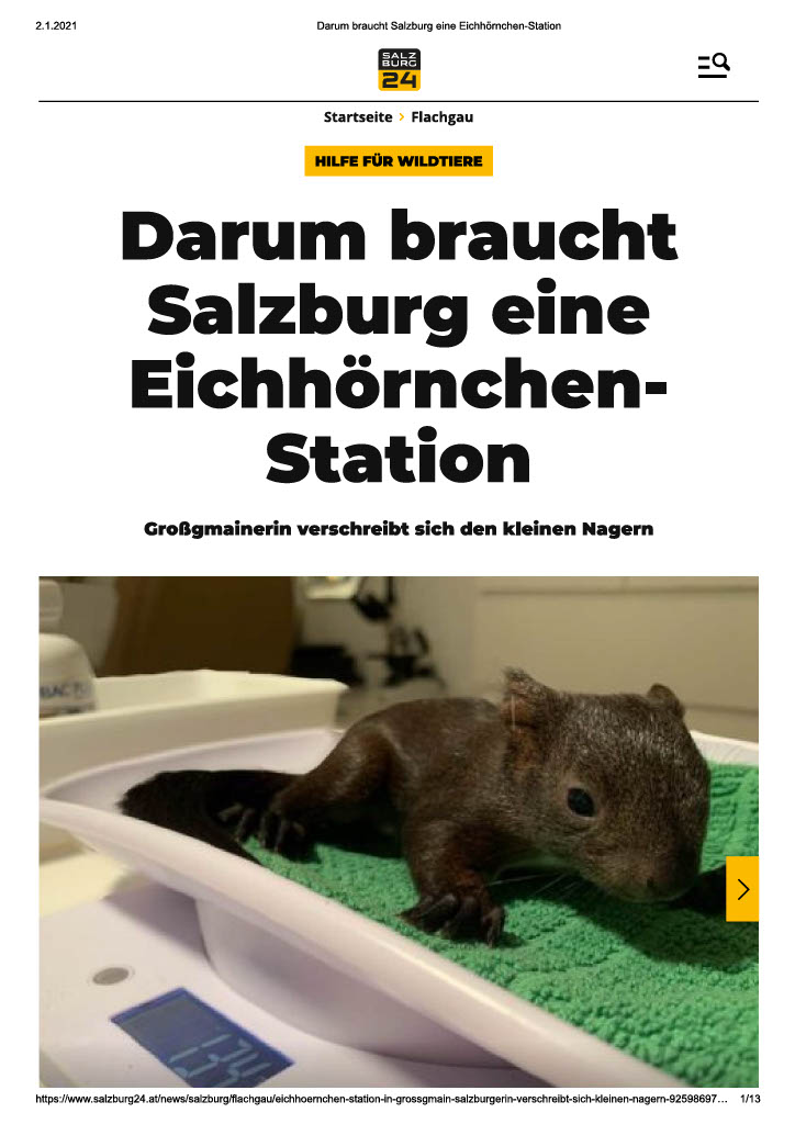 Salzburg24 20201024_1